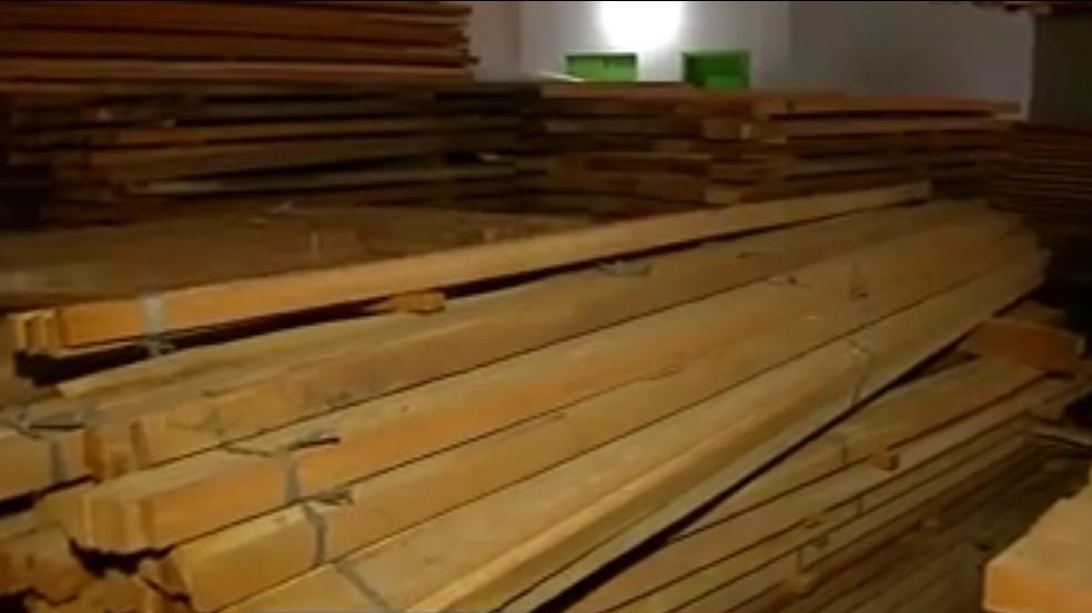 Ibama doa madeira apreendida para Prefeitura de Sinop — Foto: Reprodução/TVCA