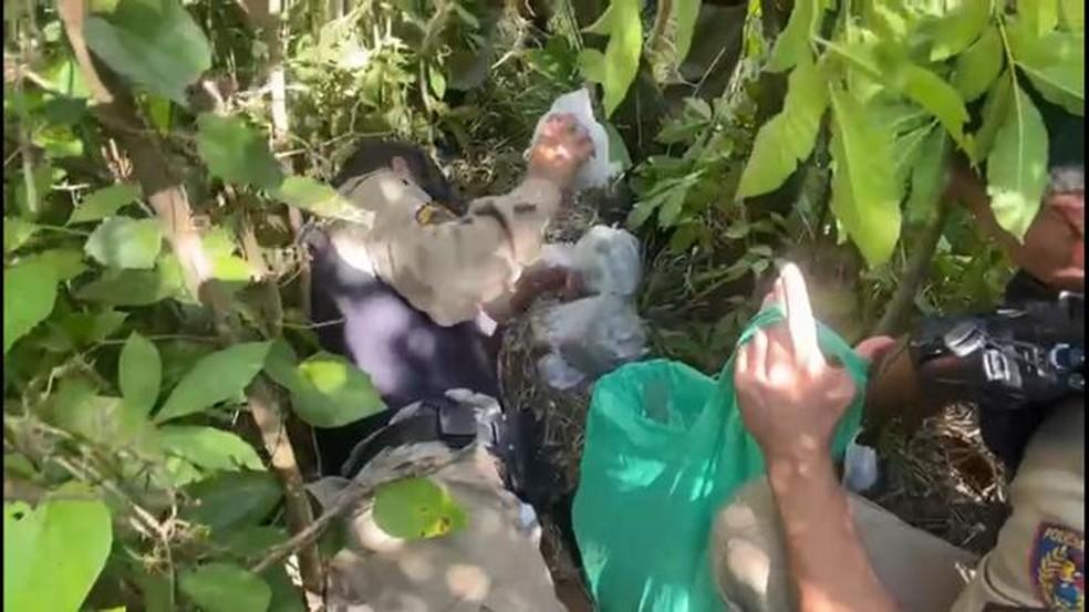 PM retirando as drogas que estavam nos tonéis enterrados. — Foto: Polícia Militar/Divulgação