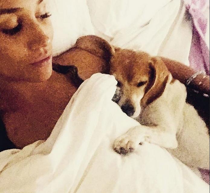 A atriz Meghan Markle com seu cachorrinho Guy (Foto: Instagram)