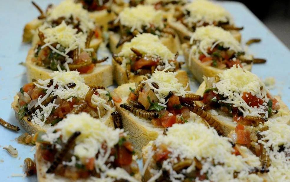 Evento terá oficina sobre insetos na alimentação humana e degustação de pratos (Foto: Comunicação Esalq/Piracicaba)