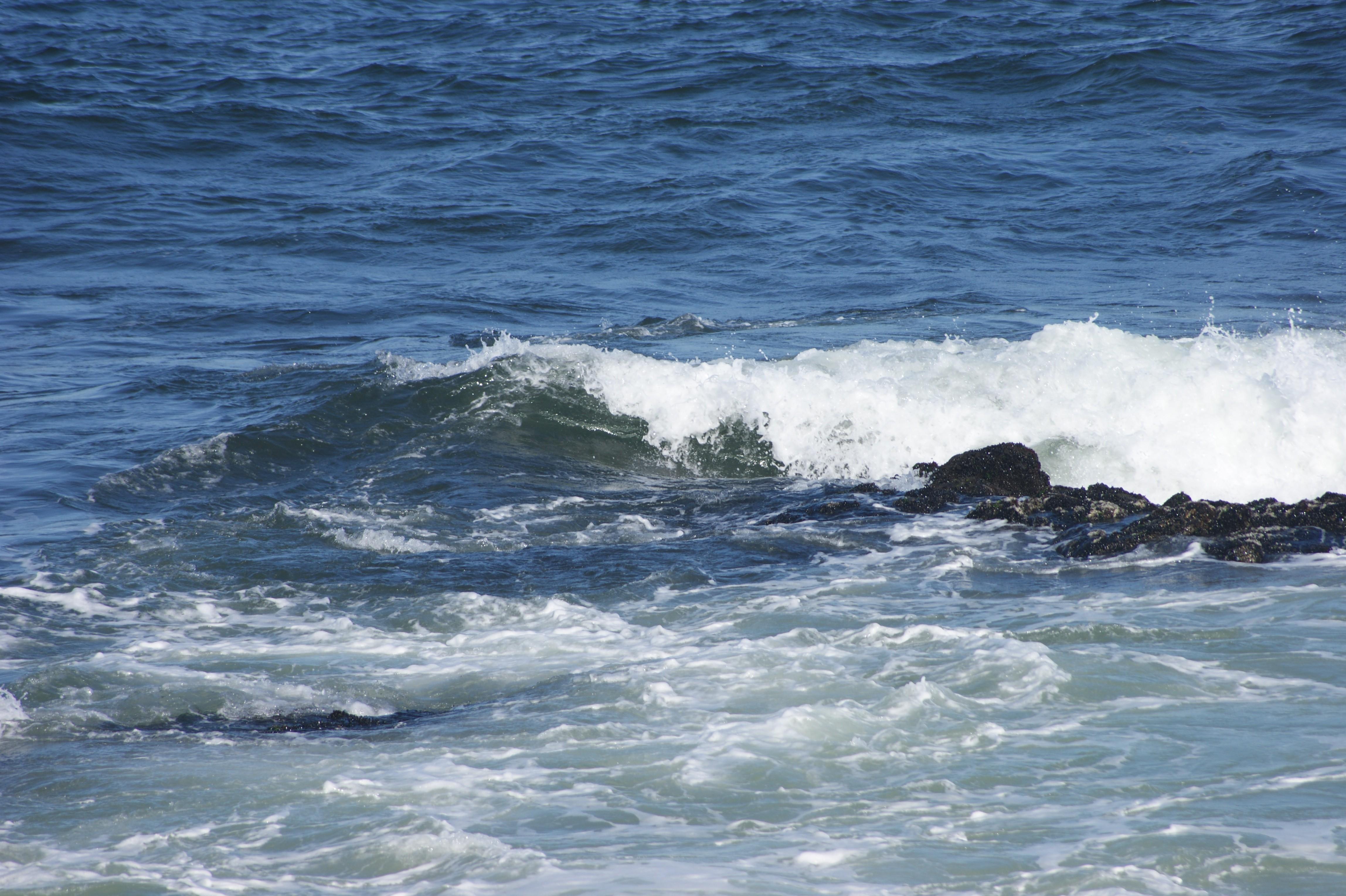 As águas do oceano ainda são um pouco alcalinas (Foto: Rosina Peixoto/Wikimedia Commons)
