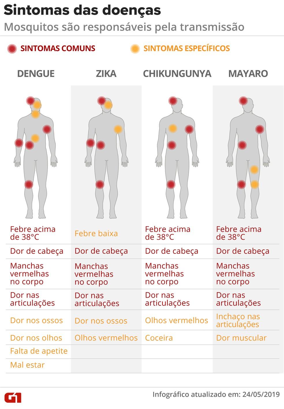 Sintomas de doenças transmitidas por mosquitos — Foto: Rodrigo Sanches e Diana Yukari/G1