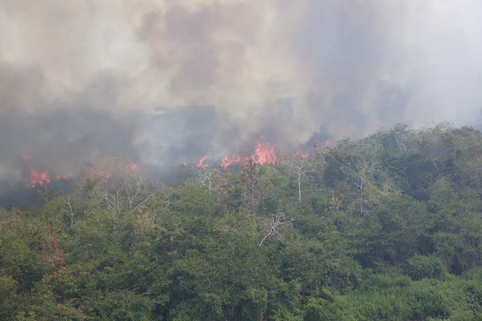 Esse é o maior incêndio registrado no Pantanal — Foto: Jeferson Prado