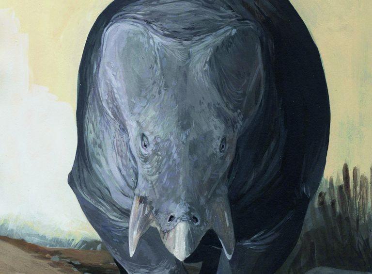 Lisowicia bojani viveu há mais de 200 milhões de anos. (Foto: KAROLINA SUCHAN-OKULSKA)