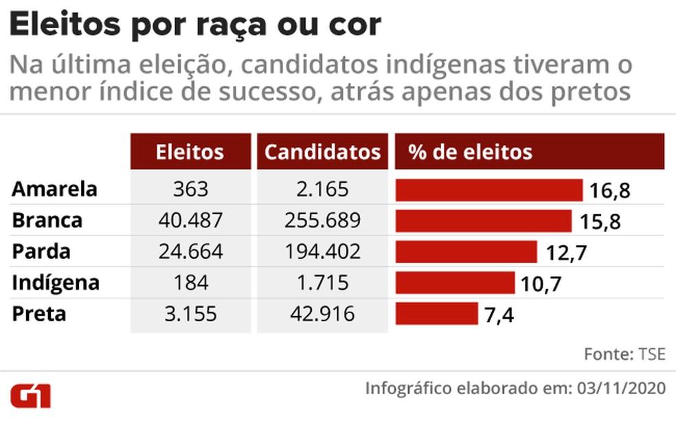 Percentual de eleitos por raça ou cor nas eleições municipais de 2016 — Foto: Elcio Horiuchi/G1