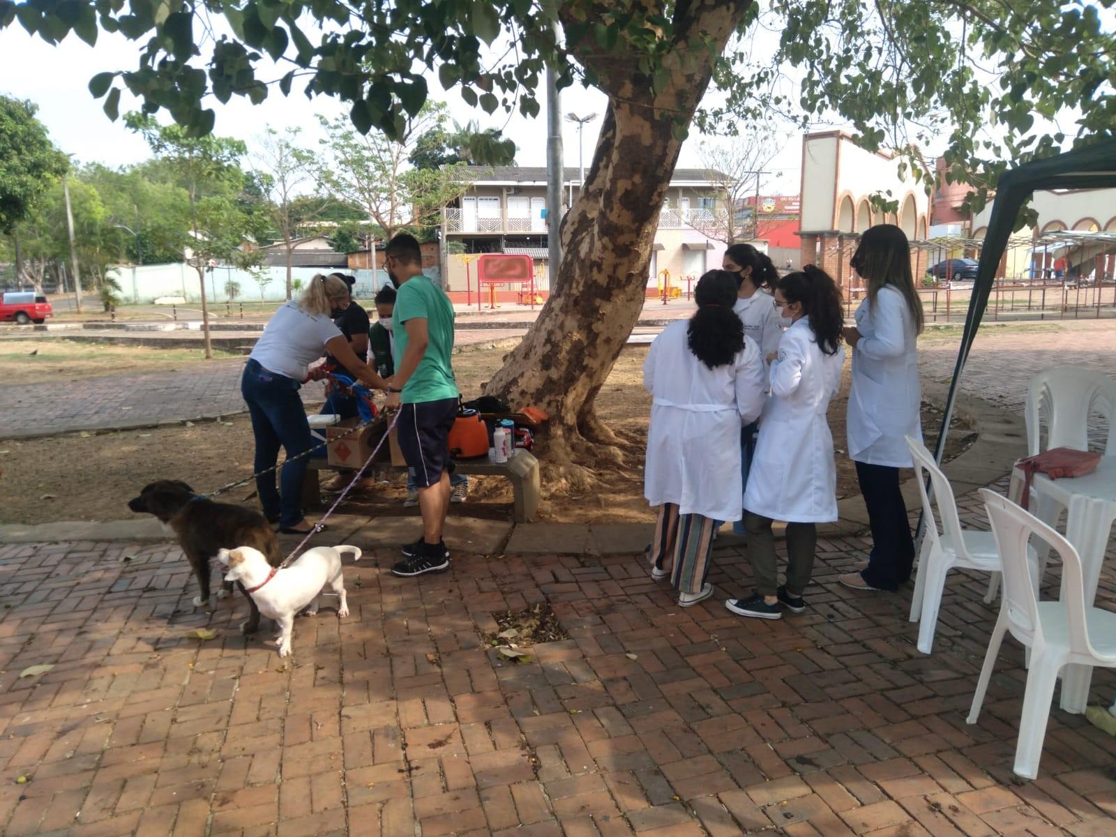 Na capital, campanha de vacinação antirrábica imuniza cães e gatos na Baixada da Sobral no sábado (25)