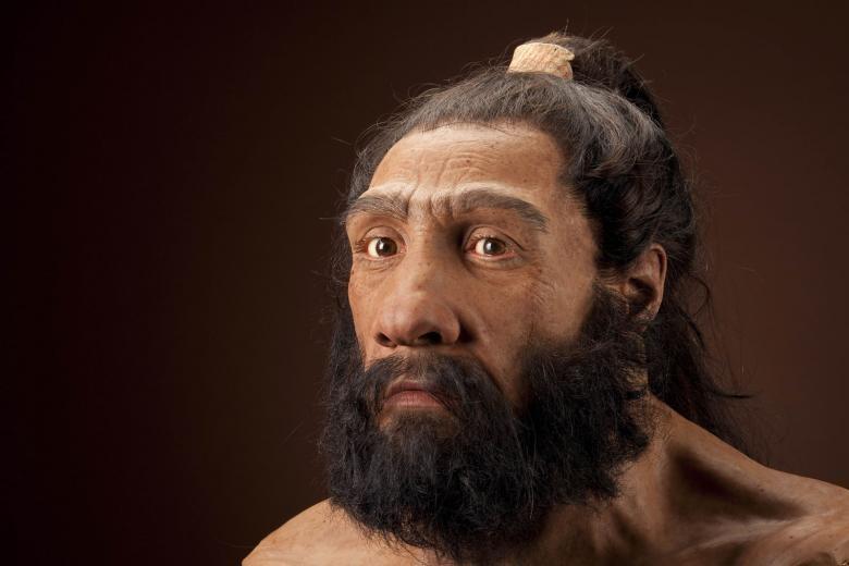 Representação de um neandertal europeu feita pela Universidade de Edinburgo (Foto: Divulgação)