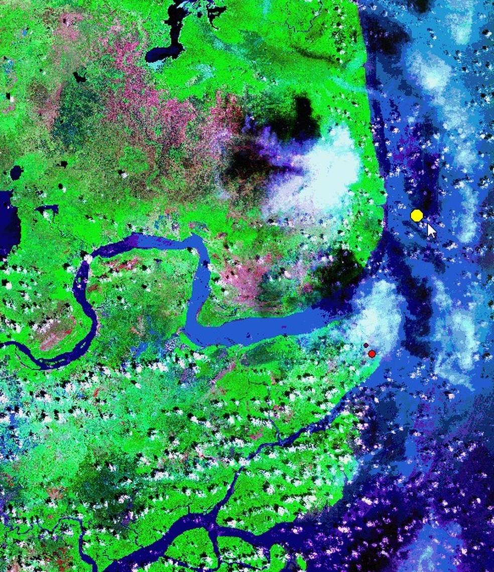 Imagem de satélite mostra onde animais que integram o acervo do Iepa foram achados encalhados: no ponto amarelo, a localização da cachalote em 2021; e mais abaixo, no ponto vermelho, a baleia-jubarte em 2018 — Foto: Acervo/Iepa