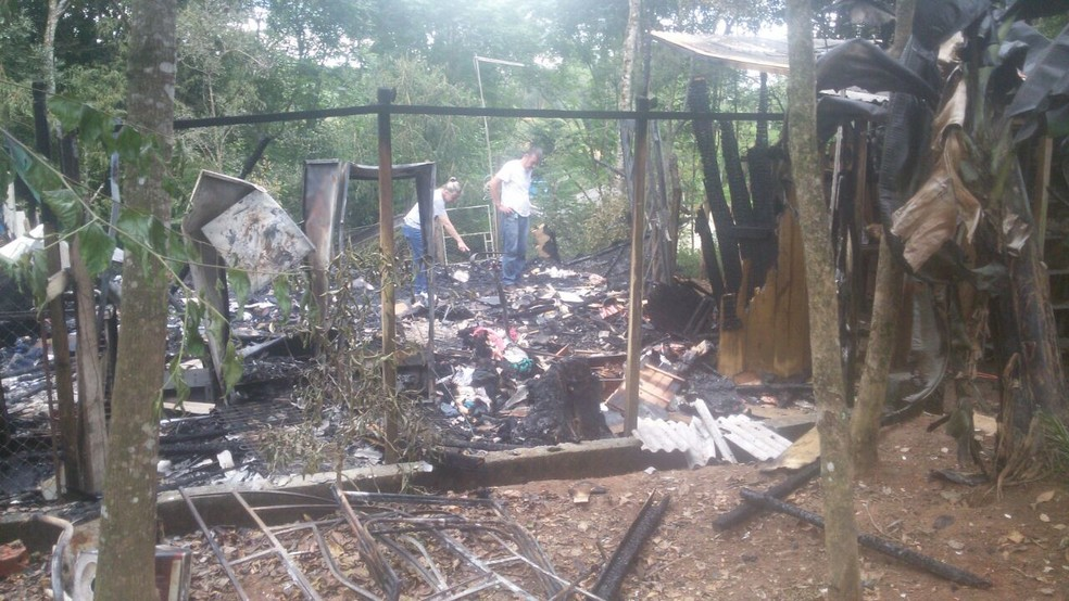 Animais morreram no incêndio criminoso em São Roque (Foto: Arquivo pessoal)