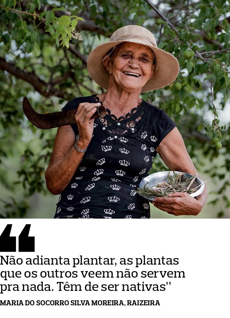 Maria do Socorro Silva Moreira, Raizeira - Com orações, cantos, raízes e garrafadas,  elas preservam os saberes e as práticas da Caatinga (Foto: José Medeiros)