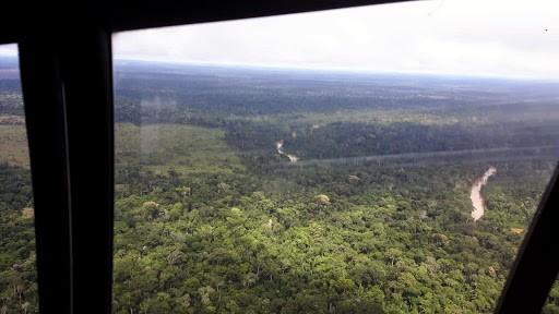 MP-RO inicia operação para desocupar Parque Estadual Guajará-Mirim