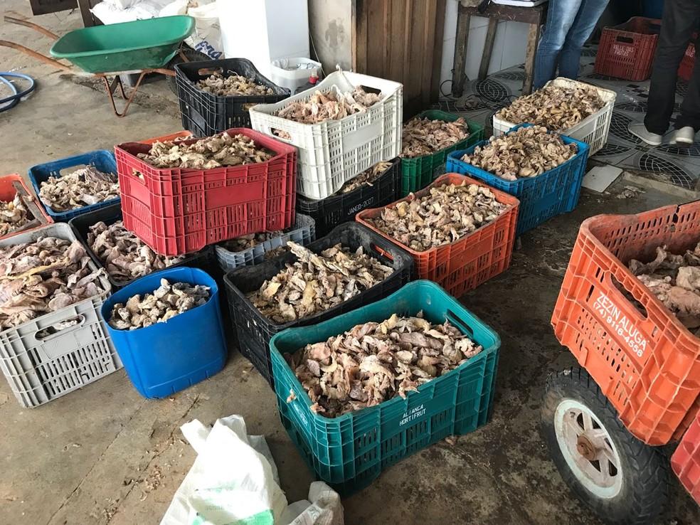 Foram 5,3 toneladas de carne encontradas dentro de uma espécie de galpão no bairro Flores, em Manaus (Foto: Divulgação/Polícia Civil)