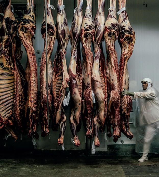 Mais quatro países suspendem compras de carne do Brasil após caso de vaca louca