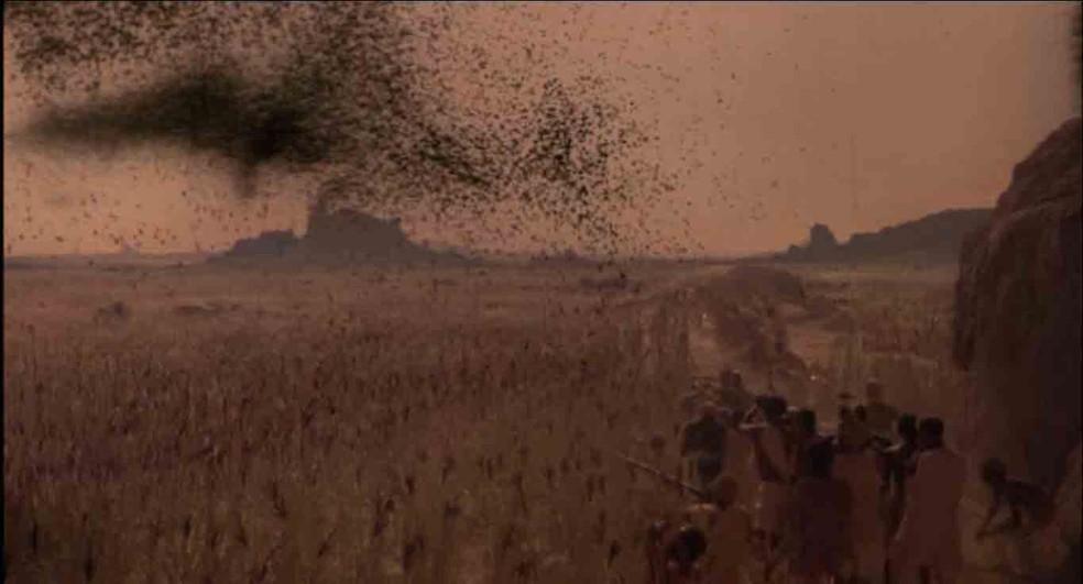 Nuvem de gafanhotos em 'O exorcista II – O herege' — Foto: Divulgação