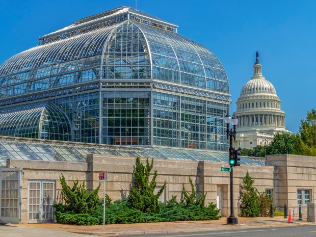 Washington DC: The United States Botanic Garden Conservatory, one of the oldest botanic gardens in North America and the Capitol building in background. Independence Avenue. (Foto: Getty Images)
