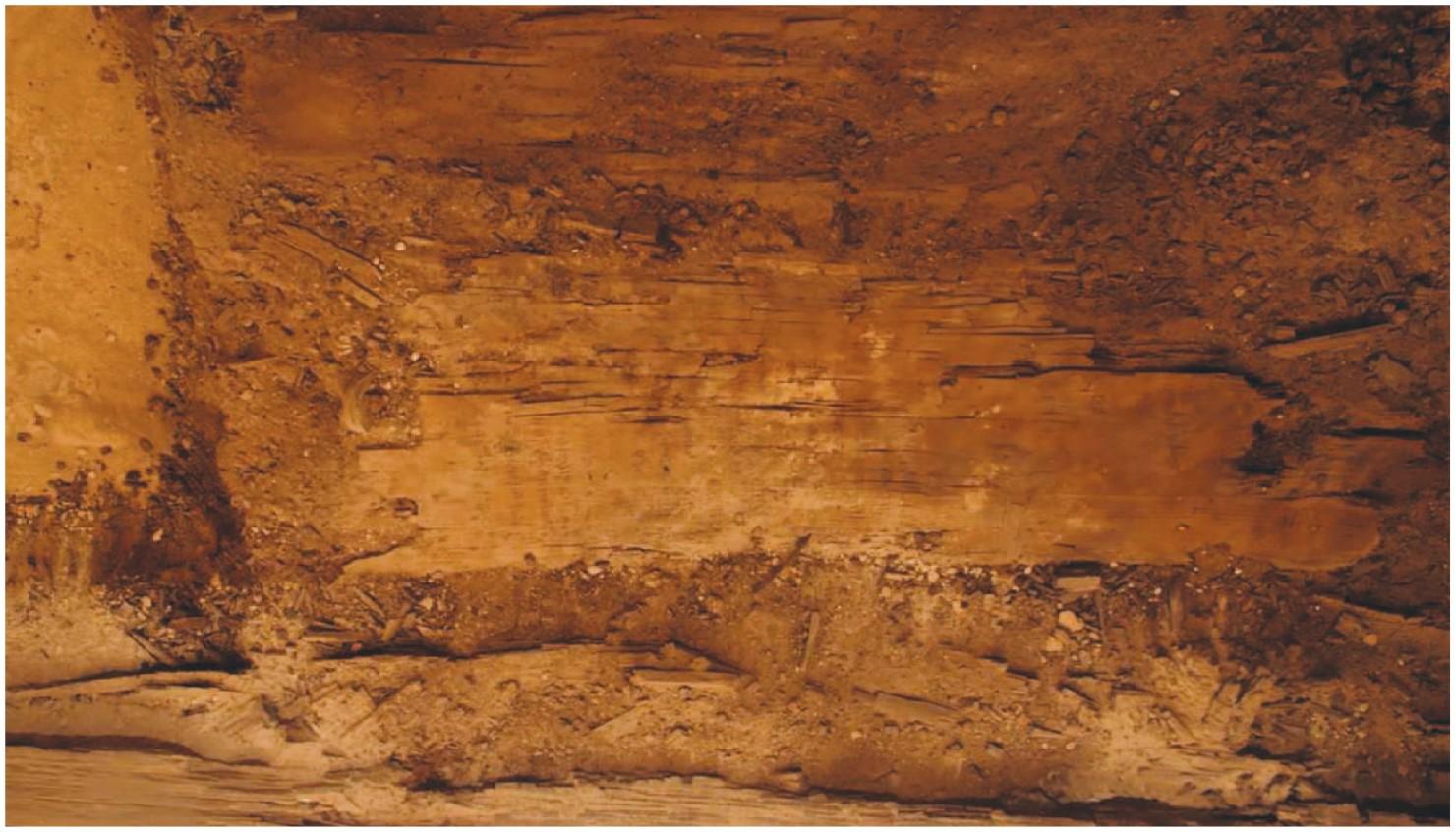 Local onde o livro foi encontrado, na tumba de Ankh (Foto: Harco Willems/Journal of Egyptian Archaeology)
