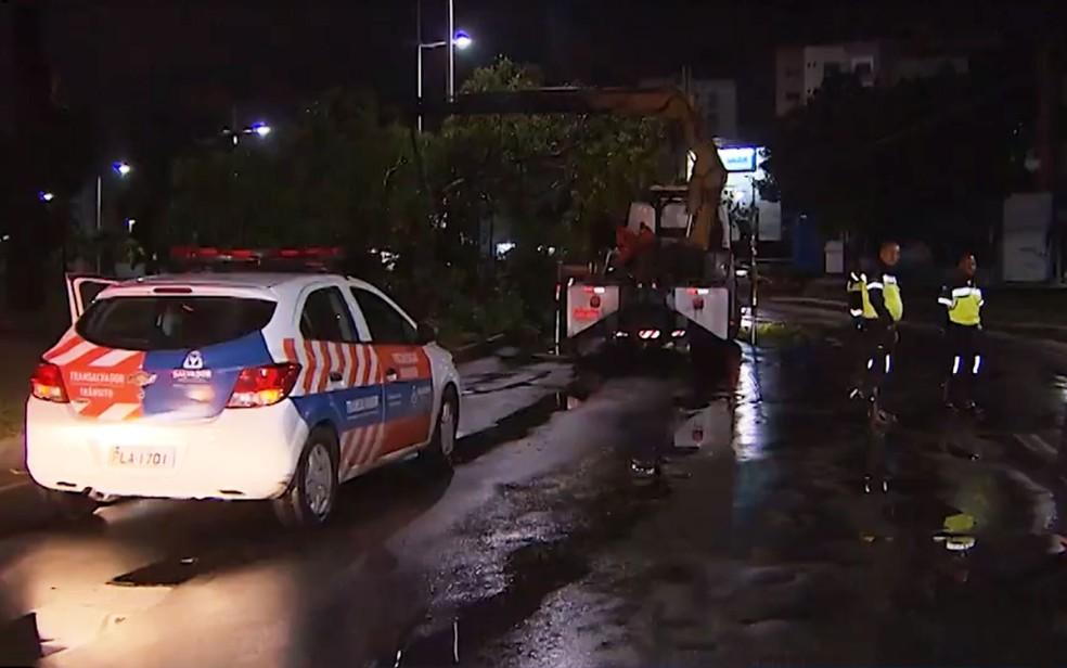 Parte de árvore cai na Avenida Juracy Magalhães Júnior â?? Foto: Reprodução/TV Bahia