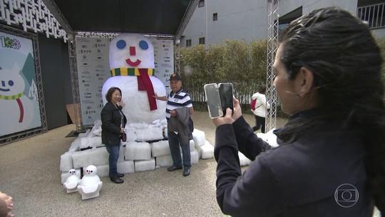 Bonecos de neve na Avenida Paulista são presente japonês por 'vaquinha'
