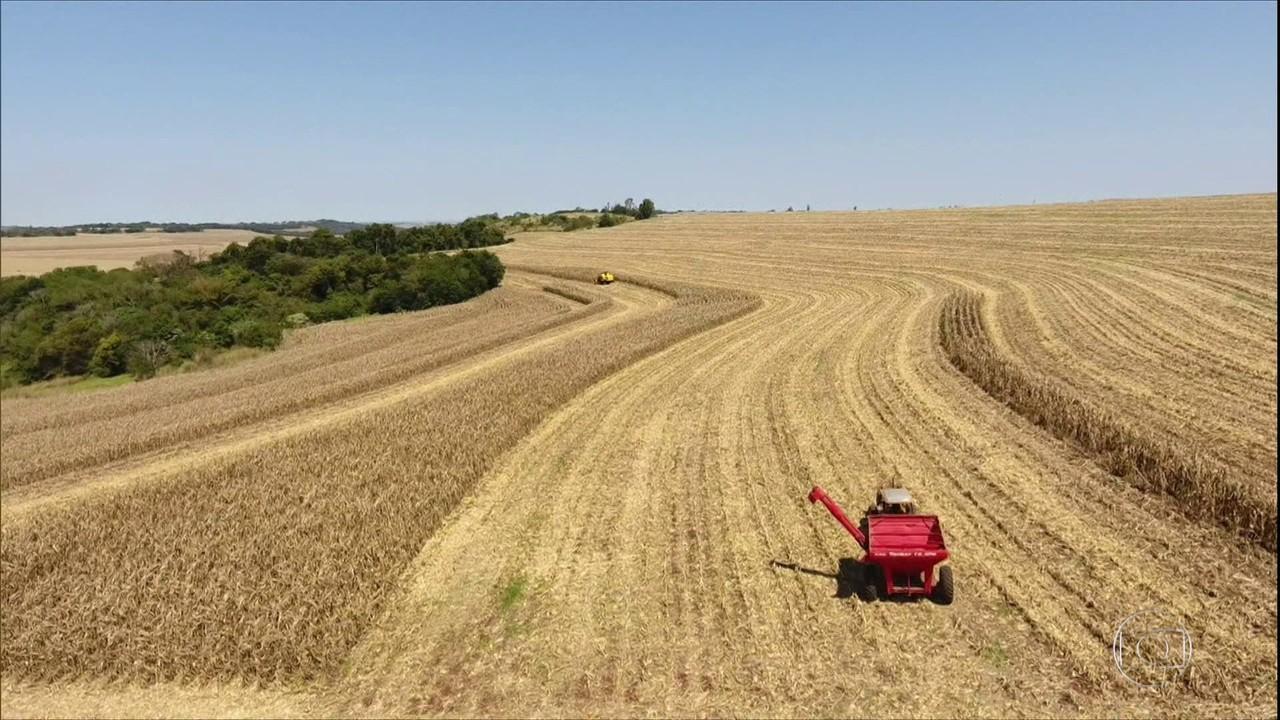 Agricultores do Centro-Sul do país já vendem a soja que só será colhida em 2021 e 2022
