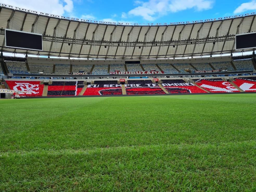 Gramado do Maracanã para Flamengo x América-MG — Foto: Divulgação