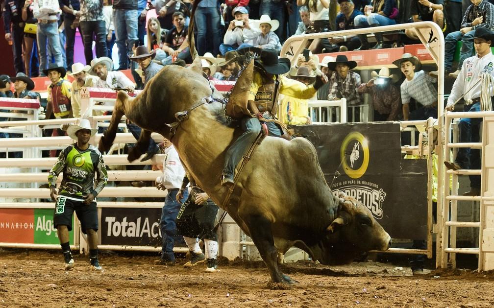 Montaria em touros na Festa do Peão de Barretos (SP) — Foto: Érico Andrade/G1
