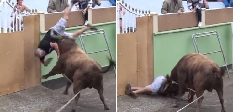 Homem é atingido por touro em Portugal