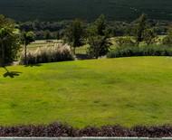Os principais tipos de grama e os seus usos mais comuns