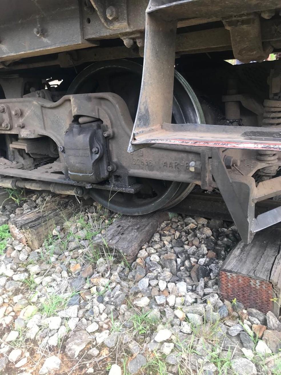 Trem descarrilou durante passeio neste domingo — Foto: Priscila Sassaki/Vanguarda Repórter