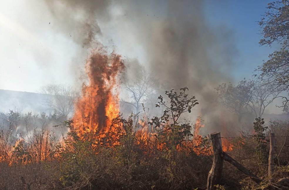Imagem da última quinta-feira (19) quando as chamas começaram — Foto: Corpo de Bombeiros/ Divulgação