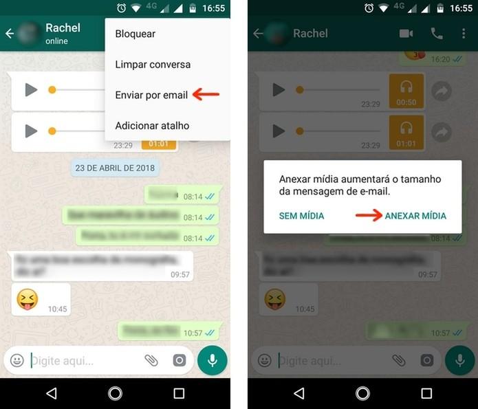 Escolha entre envio de conversa do WhatsApp com ou sem mídia para e-mail (Foto: Reprodução/Raquel Freire)