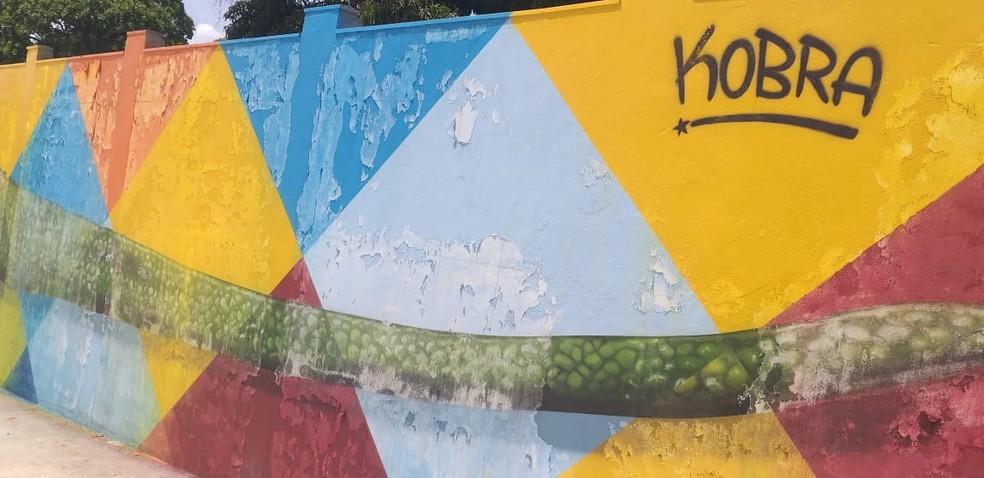 Mural no Parque Rio Branco é assinado pelo artista brasileiro Eduardo Kobra — Foto: Vanessa Fernandes/G1 RR