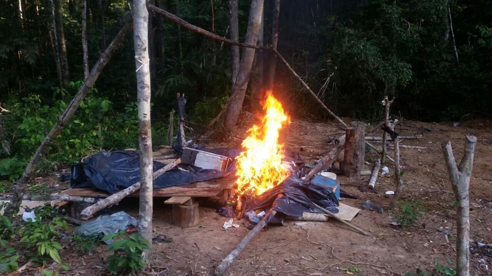 Operação está sendo realizada desde 6 de outubro (Foto: Ibama/Divulgação)