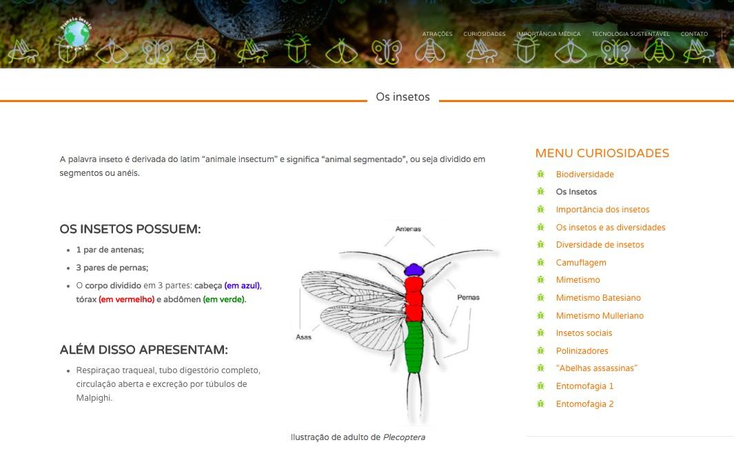 No site, é possível aprender mais sobre os insetos e qual a diferença entre eles (Foto: Reprodução)