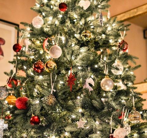 Especial Natal: a época mais gostosa do ano já chegou!