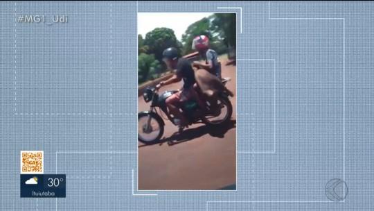 Vídeo mostra dupla transportando em moto porco furtado de fazenda em Capinópolis