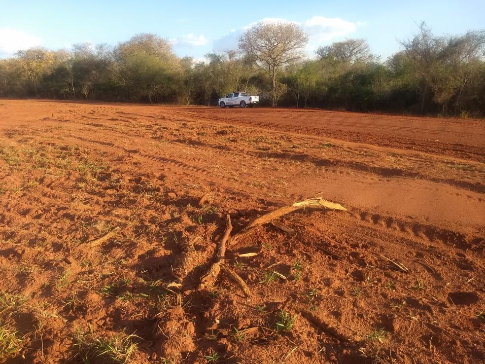 Empresa agropecuária é multada em mais de R$ 345 mil em Flora Rica — Foto: Polícia Ambiental