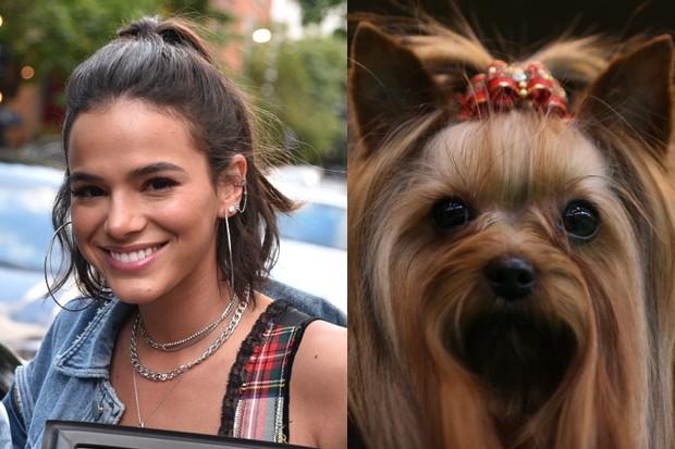 Bruna Marquezine se compara com cachorro (Foto: Leo Franco / AgNews)