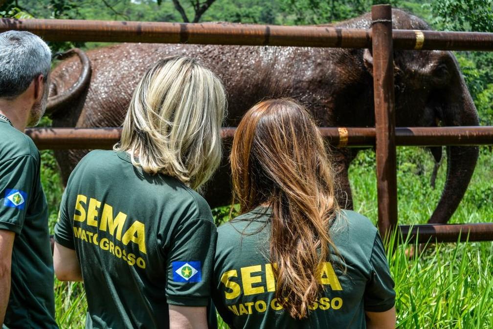 Sema realizou visita técnica no santuário e constatou mudanças na fauna e flora — Foto: Tchélo Figueiredo/Secom