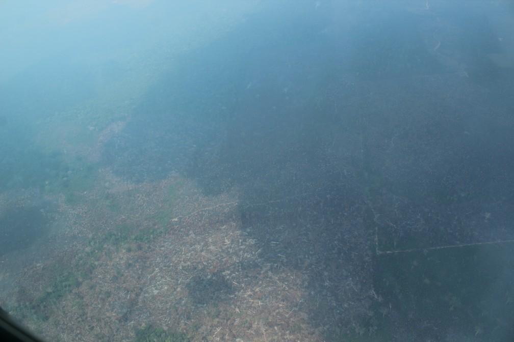 G1 flagra área desmatada ao sul do Amazonas — Foto: Jonatas Boni/G1