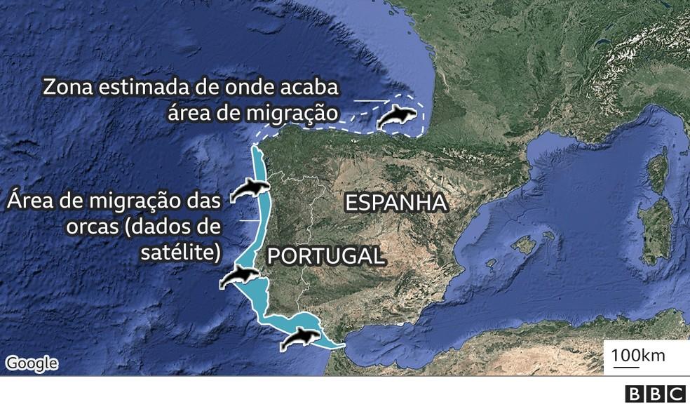 Região estimada onde acaba a migração das orcas — Foto: BBC