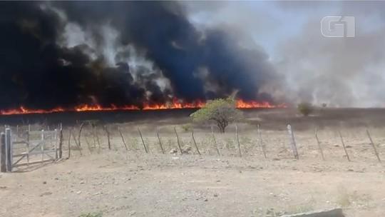 Incêndio atinge vegetação de interior do RN e é controlado por bombeiros; veja vídeo