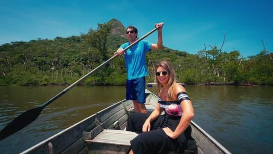 Pelo litoral paranaense: saiba como preparar ostras para o consumo