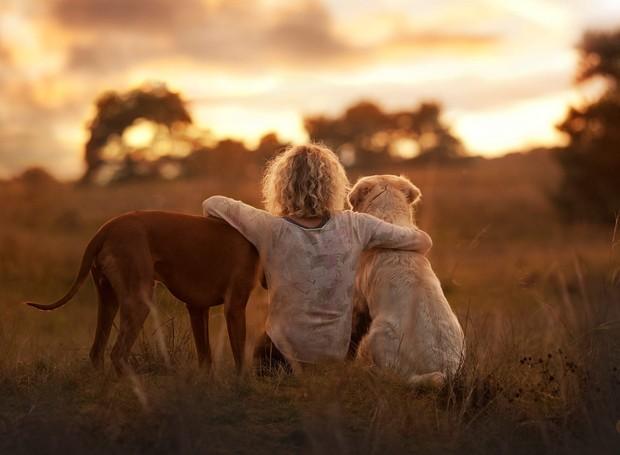 Cachorros são como crianças: trazem alegria ao lar (Foto: The Odissey Online/ Reprodução)