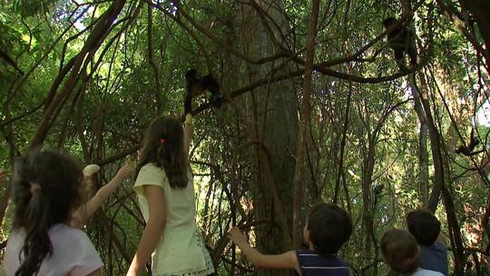 Conheça o Parque Ecológico de Ourinhos