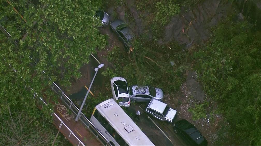 Árvores caíram em trecho da Avenida Niemeyer — Foto: Reprodução/TV Globo