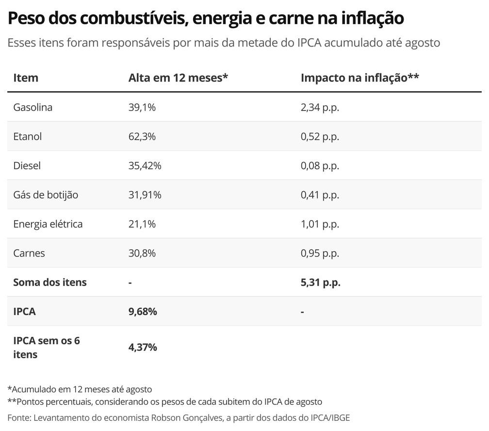 Peso dos combustíveis, energia e carne na inflação — Foto: Economia G1
