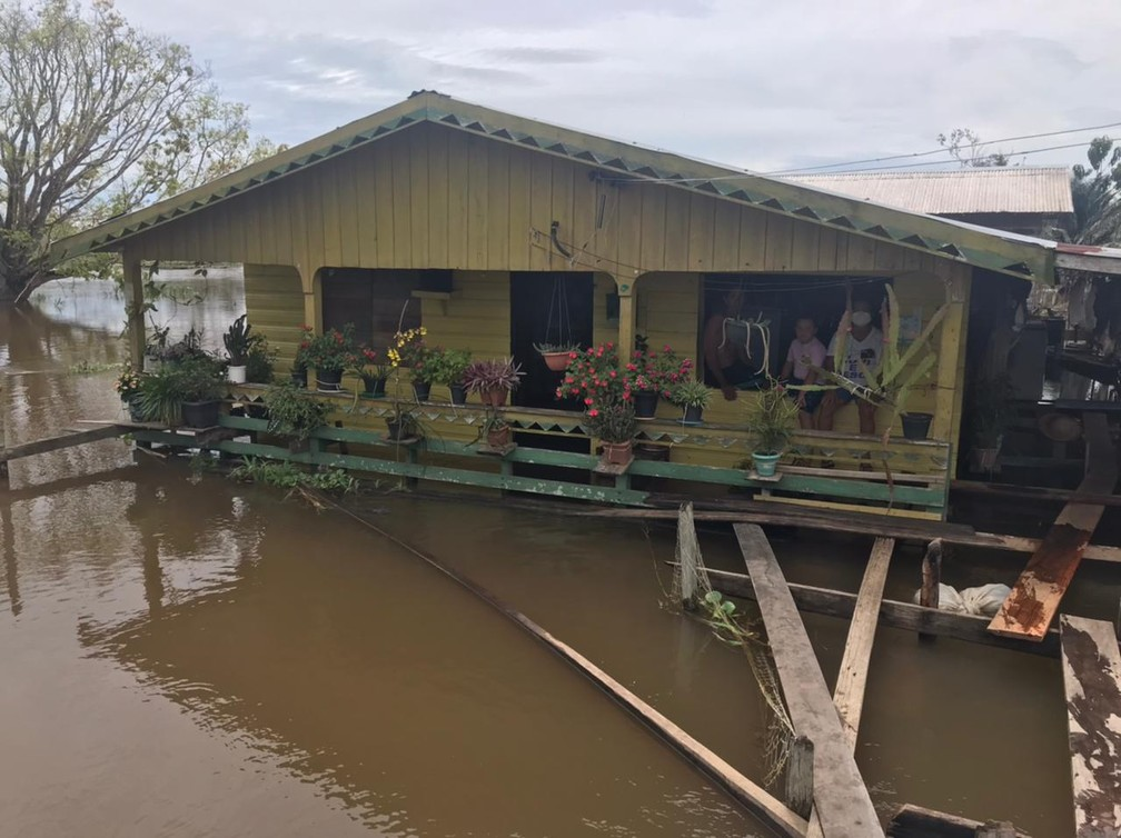 Moradores ficam isolados por causa da cheia em Careiro da Várzea — Foto: Jucélio Paiva/Rede Amazônica