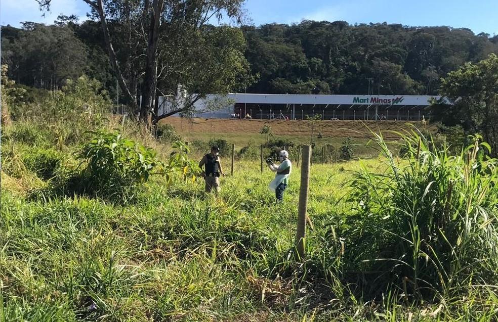 Corpo de Elídia Geraldo foi encontrado em 22 de julho em um terreno às margens da MGT-265 em Ubá; ela estava desaparecida desde 2 de julho  — Foto: Polícia Militar/Divulgação