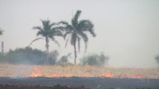 Mulher morre ao tentar controlar incêndio