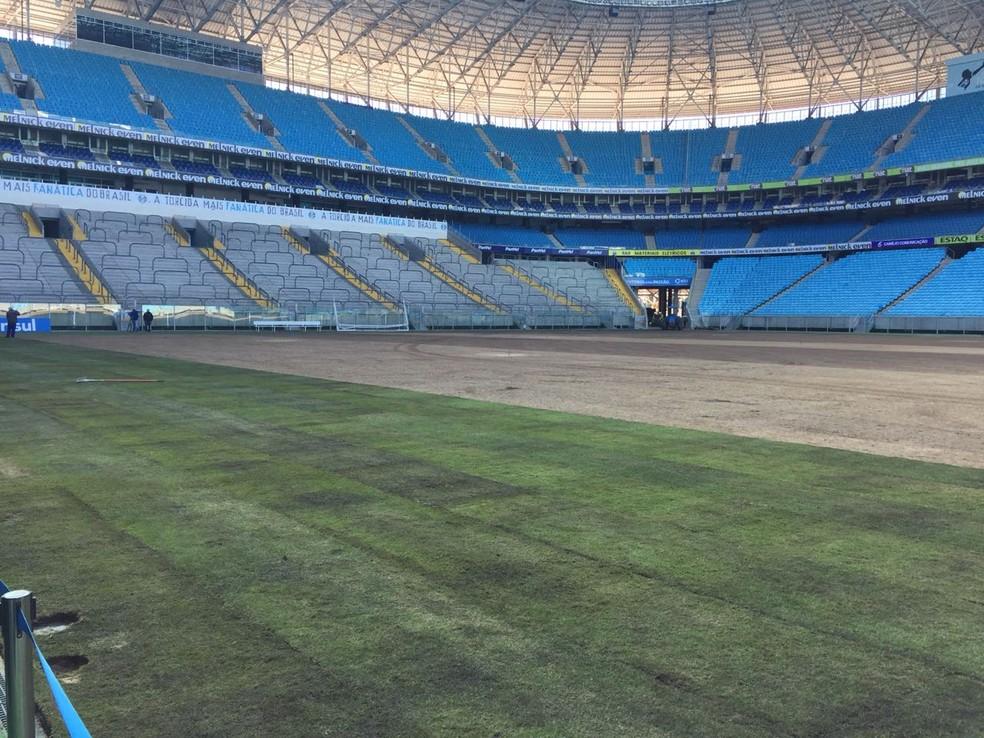 Novo gramado da Arena do Grêmio (Foto: Fernando Becker/RBS TV)